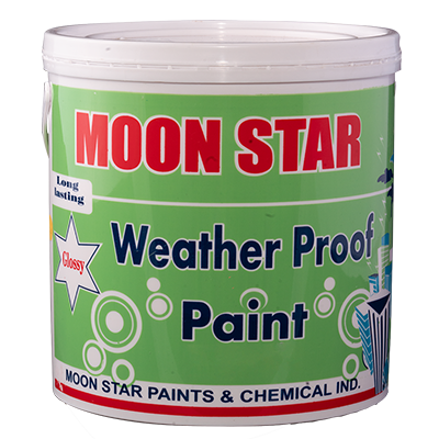 Weather Proof Paint